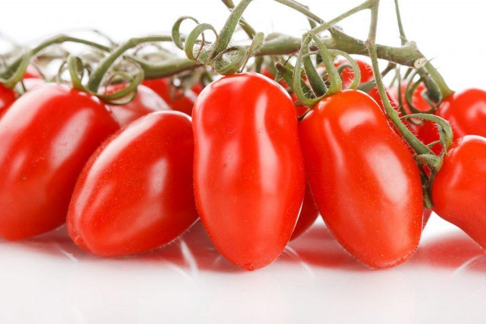 Характеристика Сибирского гроздевого томата