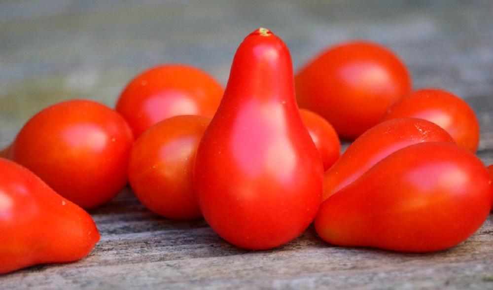 Красная груша
