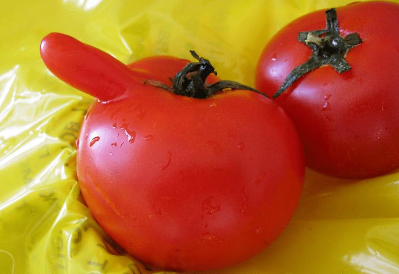 """Внешний вид томата """"Синьор Помидор"""""""