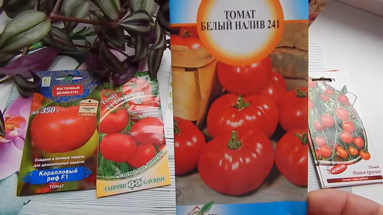Зависимость всхожести от сорта томатов