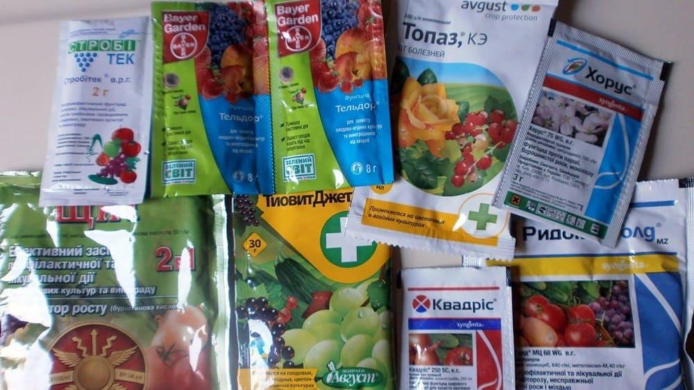 Химические средства для обработки томатов
