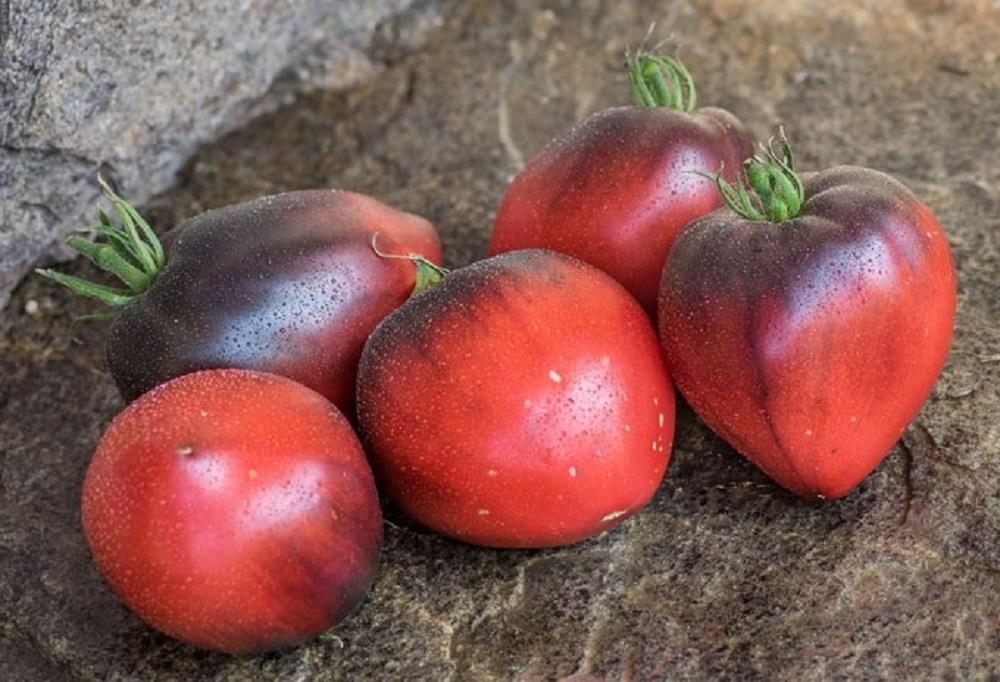 Достоинства и недостатки томатов «Сержант Пеппер»