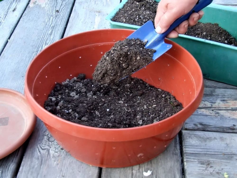 Подготовка почвосмеси